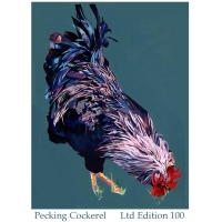 Pecking Cockerel