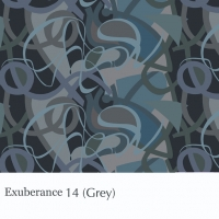 Exuberance 14 grey