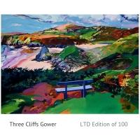 three cliffs wc